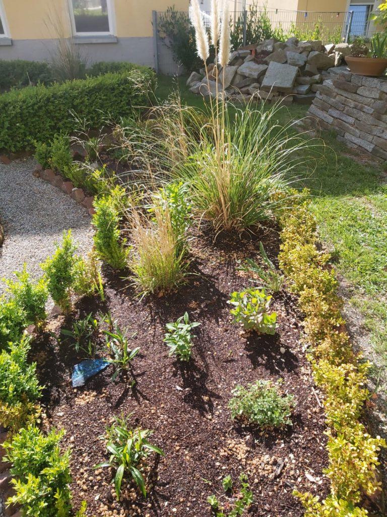 Beet mit gesponserten Pflanzen
